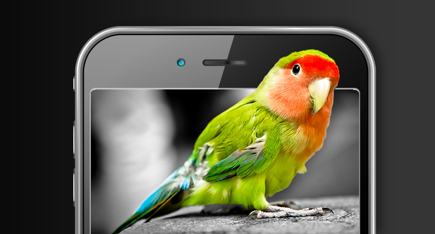 Red and green parrot popping out of smartphone screen